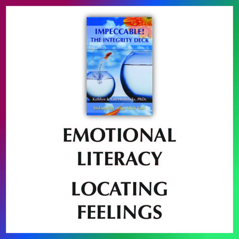 Integrity Deck Video- Emotional Literacy- Locating Feelings