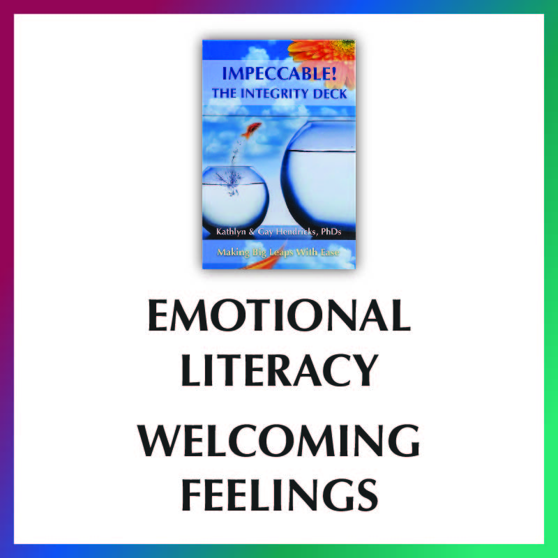Integrity Deck Video- Emotional Literacy- Welcoming Feelings