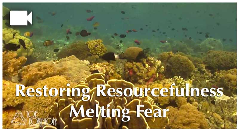 Restoring Resourcefulness: Melting Fear with Joe Robinson